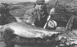 Jack Shine's largest from the rocks, a porbeagle of 145lbs. taken at Green Island. Note the Alvey sidecast reel.