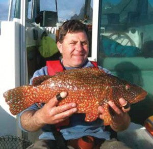 Best Ballan Wrasse of 2011 for Declan MacGabhann