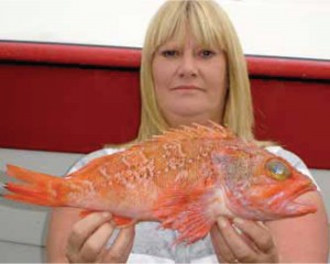 NEW RECORD BLUEMOUTH: Sue Tait from Cork with her new record of 1.32 kg taken off Caherciveen on 28th July 2008